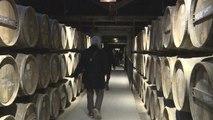 Cognac : l'œnotourisme est de plus en plus important