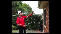 General Pest Control in Sydney, AU - Factors To Consider When Hiring A Professional Pest Control Company