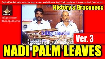 Nadi Astrology: History-3 (Nadi Palm Leaves)-Kalki