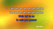 Karaoké C'est la vie, Lily - Joe Dassin *