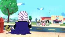 Super Mémés | Les Super Nanas | Cartoon Network