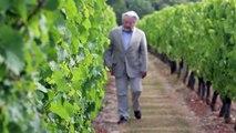 Foire aux Vins Carrefour Market :  comment ouvrir une bouteille de vin ?