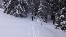 Ski de randonnée nordique dans les Hautes Vosges