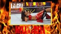 NIKKI BELLA VS BRIE BELLA - HELL IN A CELL MATCH (2014) - WWE Wrestling Diva Sports Female Women Women's Wrestling Entertainment
