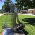 Ces sculptures sont incroyable : effet d'optique et transparence déroutants