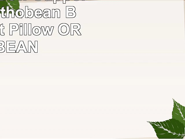 Orthobean Bow Support Pillow  Orthobean Bow Support Pillow  ORTHOBEAN