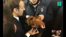 Emmanuel Macron a adopté une poule au Salon de l'Agriculture et BFMTV l'a invitée en plateau (la poule)