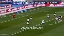 Hellas Verona-Torino 2-1 All Goals Highlights 25-2-2018