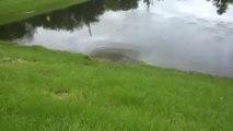 3 dolines sont en train de vider un lac... Glissement de terrain et sinkhole