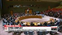 Air strikes on eastern Ghouta continue despite UN ceasefire