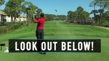 Tiger Woods Almost Takes Out a Goose
