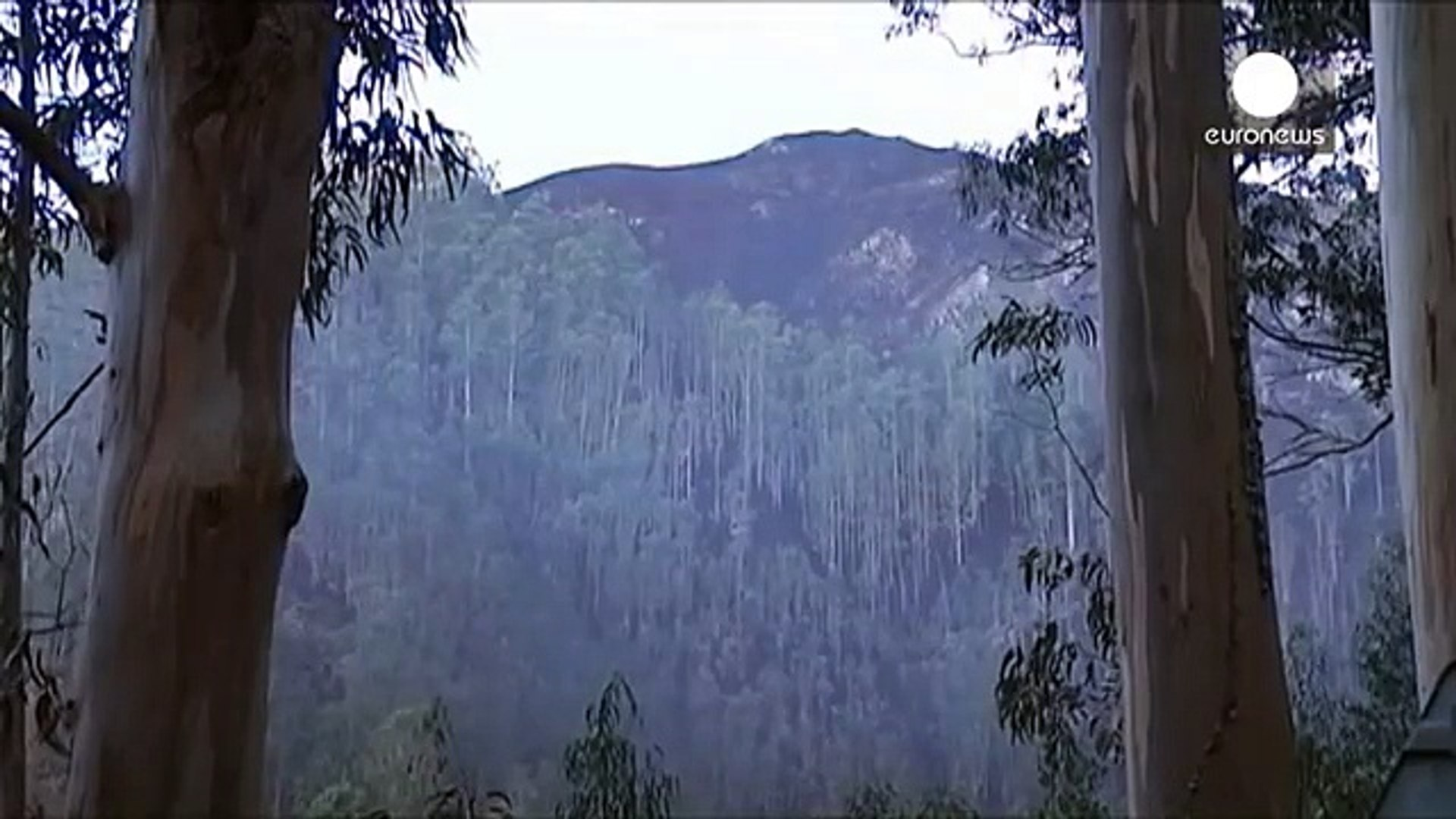Northern Spain wildfires