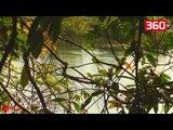 Leopardi ndeshet me një krokodil në bregun e lumit, shikoni se kush del fitimtar (360video)