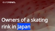 Japanese skating rink causes uproar by freezing 5,000 dead fish in ice