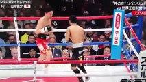 Luis Nery vs Shinsuke Yamanaka 2018-03-01