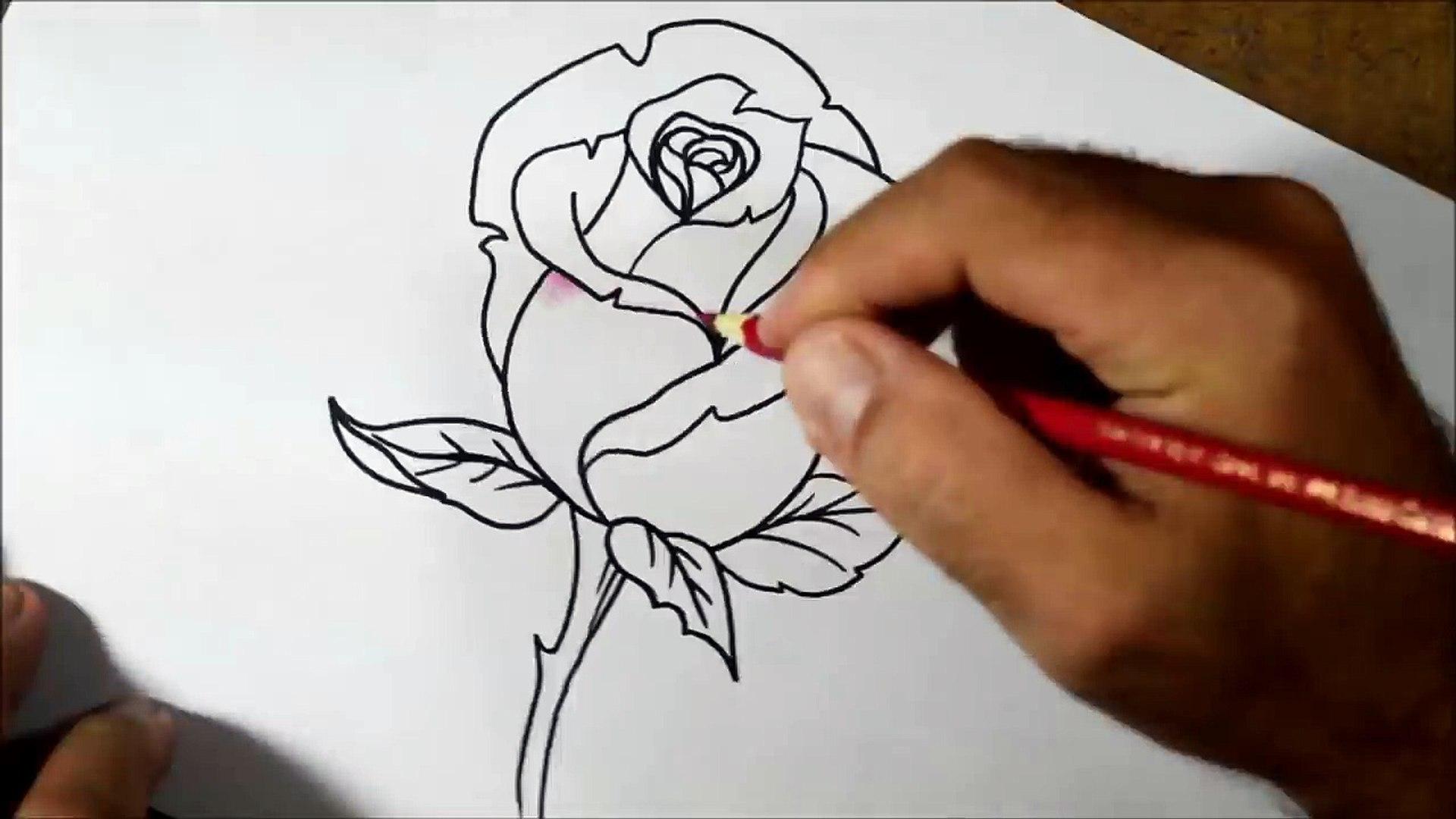 Como Desenhar E Colorir Rosa Passo A Passo Video Dailymotion