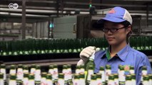 Tsingtao - German beer tradition in China | Business