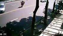 Ce gars à scooter est le plus malchanceux du monde... Double effet kiss cool