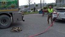 Köpeklerin kaplıca keyfi - İSTANBUL