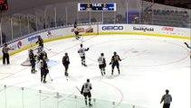 ECHL Jacksonville Icemen 2 at Norfolk Admirals 1