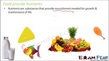 Biology Components of Food Part 3 (Nutrients in Food) Class 6 VI