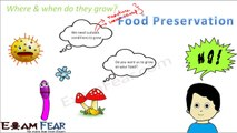 Biology Micro Organisms Part 22 (Food preservation by Chemicals , Storage) Class 8  VIII