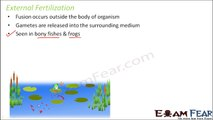 Biology Reproduction in Organisms part 13 (Fertilization events) class 12 XII