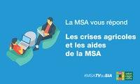 La MSA vous répond : crises agricoles et aides MSA