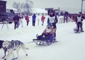 Dogs, Sleds, and Snow: The Iditarod Trail Race Begins