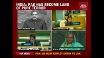 It Is Now Terroristan, India Hits Back At Pakistan At UN
