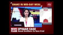 Dead Snake Found In Mid-Day Meal Of A Government School In Faridabad