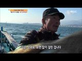 [Live Tonight] 생방송 오늘저녁 264회 - Winter sea dragon! Sokcho sand eels fishing 20151203