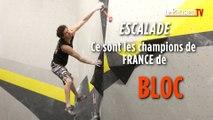 Escalade : ce sont les champions de France de bloc