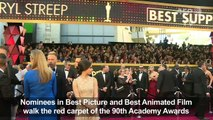 Directors of Oscar nominated films arrive on red carpet