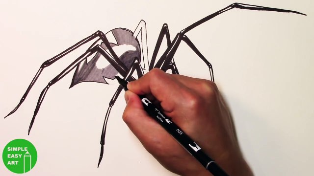 Will It Bite Black Widow Challenge 3d Spider Drawing