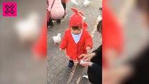 una niña graciosa le quita la comida a una paloma y se la come