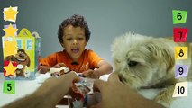 The Secret Life Of Pets McDonalds Happy Meal Toys Set + Charlie OUR pet Morkie ✳ TottyChoCho