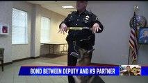 Police Officer Describes Unbreakable Bond With K9 Partner