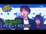 [HOT] WINNER(위너) - REALLY REALLY, Show Music core 20170415
