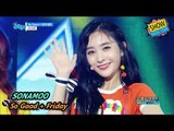 [Comeback Stage] SONAMOO - So Good +Friday Night, 소나무 - So Good + 금요일밤 Show Music core 20170819