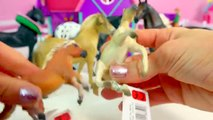 CollectA Horses Mare Foal Pony Stallion Horse Unboxing Review Video HoneyheartsC