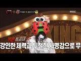 [King of masked singer] 복면가왕 - Ladybug Female voice singer? 20170514