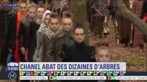 Chanel critiqué pour avoir coupé de vrais arbres pour son défilé au Grand Palais