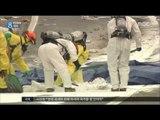 [17/03/26 뉴스데스크] 도로 위 화물 추락, 피해 큰데 처벌은 솜방망이