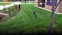 University of Michigan expert puts rare bird-like robot through its paces