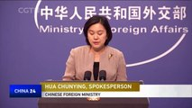 China protests Tokyo's sanctions against Chinese firms with alleged DPRK ties