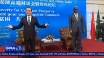 Chinese FM: Poverty reduction, sustainable development common agenda of China, Africa