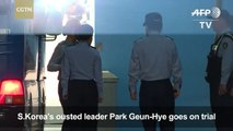 Ousted President Park denies all charges at first court hearing