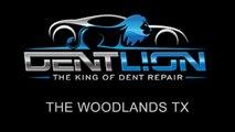 PDR   Paintless Dent Repair   The Woodlands TX   Dent Lion