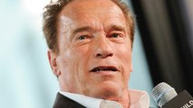 Arnold Schwarzenegger Reveals Major Actor For Twins Sequel